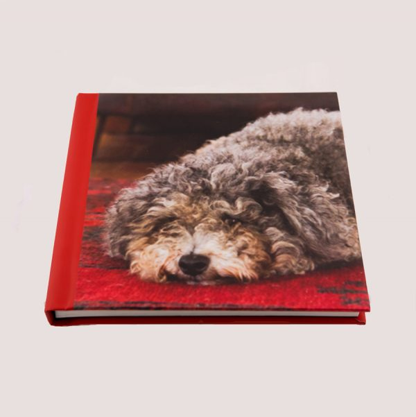 Short & Sweet 24 Photos Book by Simmy D Photo Books Australia